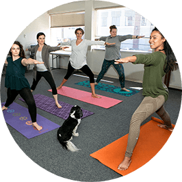 yoga class at Nourish